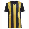 Craft-Progress-Jersey-Stripe-JR-lasten-tekninen-paita-black-sweden-yellow