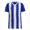 Craft-Progress-Jersey-Stripe-JR-lasten-tekninen-paita-club-cobolt-white