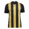 Craft-Progress-Jersey-Stripe-Men-F-miesten-urheilupaita-black-sweden-yellow