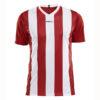 Craft-Progress-Jersey-Stripe-Men-F-miesten-urheilupaita-bright-red-white