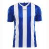 Craft-Progress-Jersey-Stripe-Men-F-miesten-urheilupaita-club-cobolt-white