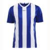 Craft-Progress-Jersey-Stripe-Men-F-miesten-urheilupaita-royal-blue-white