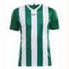 Craft-Progress-Jersey-Stripe-Men-F-miesten-urheilupaita-team-green-white